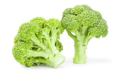 Broccoli floret  on a white background cutout. Fresh raw broccoli  on a white background cutout Stock Image