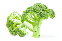 Broccoli floret  on a white background cutout. Fresh raw broccoli  on a white background cutout Stock Images