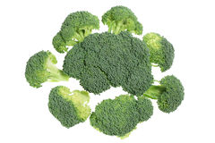 Broccoli Florets Royalty Free Stock Photo