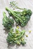 Broccoli florets Royalty Free Stock Image