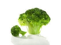 Broccoli florets isolated Stock Image