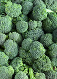 Broccoli florets Royalty Free Stock Image
