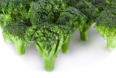 Broccoli forest Stock Images