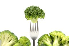 Broccoli on fork Royalty Free Stock Photos