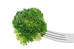 Broccoli on Fork Royalty Free Stock Images