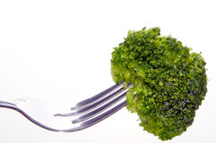 Broccoli on fork Stock Images