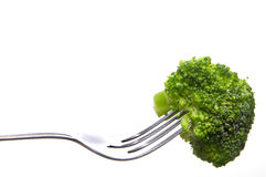 Broccoli on a Fork Royalty Free Stock Photo