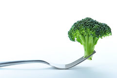 Broccoli in fork Stock Images