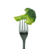 Broccoli on fork Stock Image