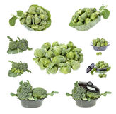 Broccoli frais Photos stock