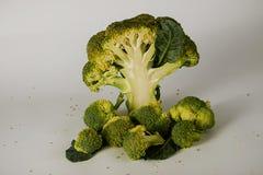 Broccoli freschi con le foglie Fotografia Stock