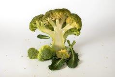 Broccoli freschi con le foglie Immagini Stock Libere da Diritti