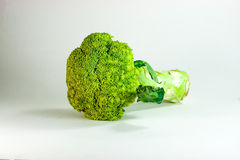 Broccoli Royalty Free Stock Photography