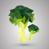 Broccoli geometric Stock Image
