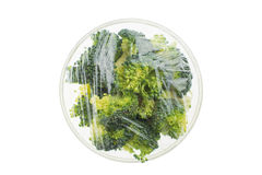 Broccoli. In a glass bowl Royalty Free Stock Photo