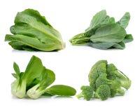Broccoli grönsallat, kinesisk broccoli, cos, Bok som är choy på vita lodisar Royaltyfria Foton