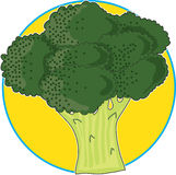 Broccoli Graphic Royalty Free Stock Image