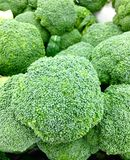 Broccoli. Green broccoli vegetable Royalty Free Stock Images