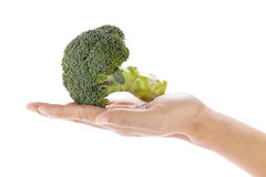 Broccoli in hand Royalty Free Stock Photo