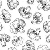 Broccoli hand drawn  seamless pattern. Vegetable engraved Royalty Free Stock Photography