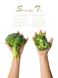 Broccoli on the hand and on white isolate background (clipping p. Broccoli on the hand and white isolate background (clipping path Stock Photo