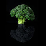 Broccoli Head Stock Images