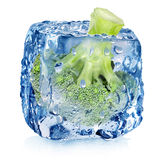 Broccoli in ice cube Stock Photo