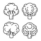 Broccoli icon set, outline style vector illustration