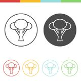 Broccoli icons vector. Vector set of broccoli icons in thin line style Stock Photo
