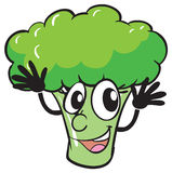 A broccoli Royalty Free Stock Image