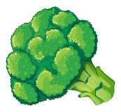 A broccoli Royalty Free Stock Images