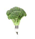 Broccoli impaled on a fork. Stock Image