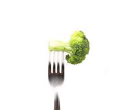 Broccoli impaled on a fork. Stock Photos