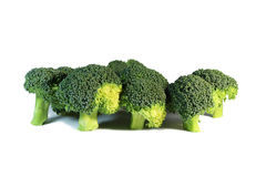 Broccoli isolated. Some broccoli isolated on the white royalty free stock photo