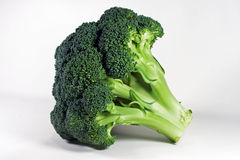Broccoli - Isolated Stock Photography