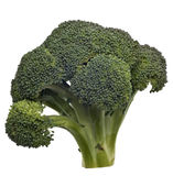 Broccoli Isolated. Fresh Green Broccoli Stalk Isolated on White with a Clipping Path Royalty Free Stock Photo