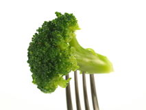 Broccoli, isolated Royalty Free Stock Image