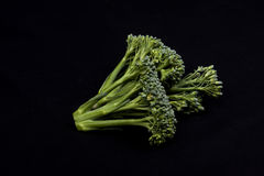 Broccoli  on black background Stock Images