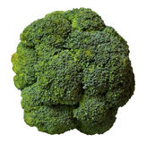 Broccoli isolated Stock Image