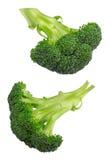 Broccoli isolated on white royalty free stock photos