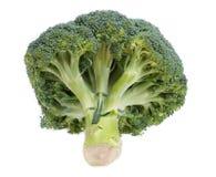 Broccoli Stock Photography