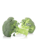 Broccoli isolated on white Stock Photos