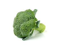 Broccoli isolated on white ackground Royalty Free Stock Photos