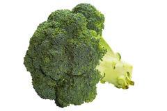 Broccoli isolated. On white background stock photo