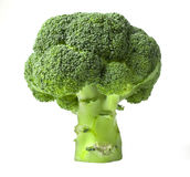 Broccoli isolated Royalty Free Stock Photos