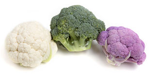 Broccoli. Isolated an white background Royalty Free Stock Photo