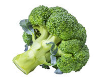 Broccoli isolated on white Royalty Free Stock Images
