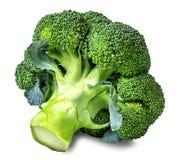 Broccoli isolated on white Stock Photos