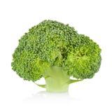 Broccoli isolated on white background Royalty Free Stock Photo