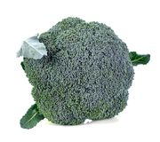 Broccoli isolated on white Stock Image